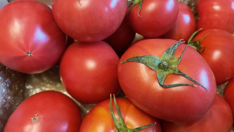 トマトのチカラ